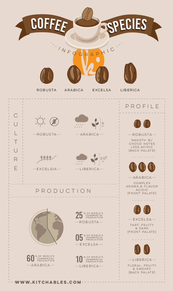 What Do Coffee Beans Taste Like?